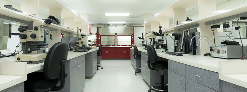 Failure Analysis Services Lab