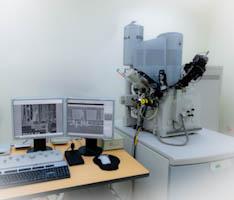 FEI Quanta FE-SEM High resolution, high precision, and high magnification